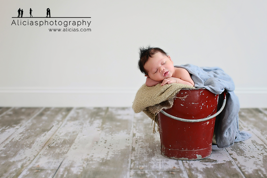 Chicago Newborn Photographer...Alicia