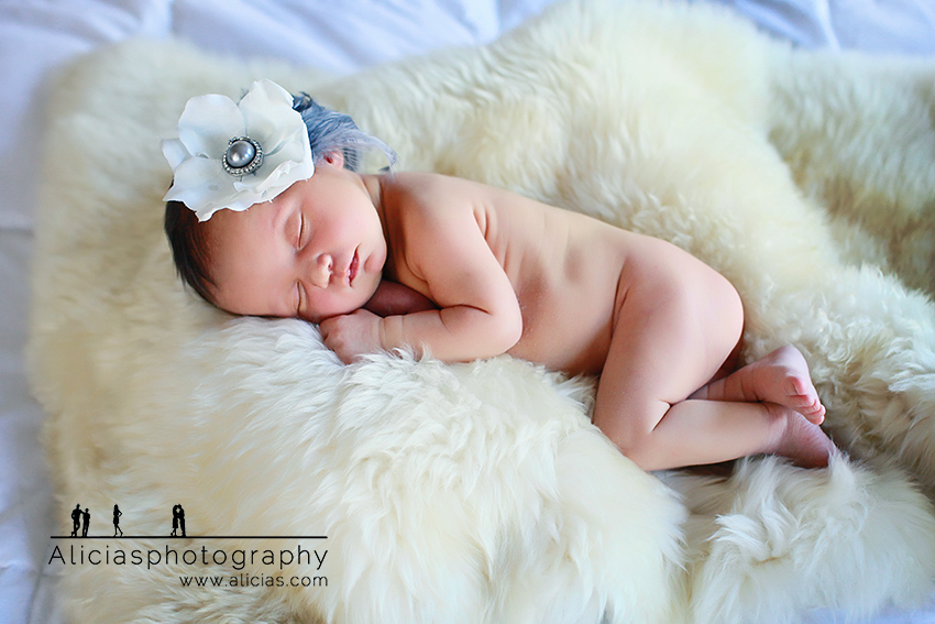 Naperille Chicago Newborn Photographer...Alicia