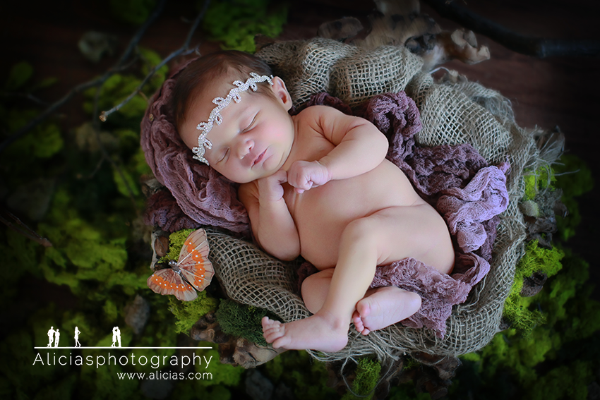 Naperille Chicago Newborn Photographer...Alicia